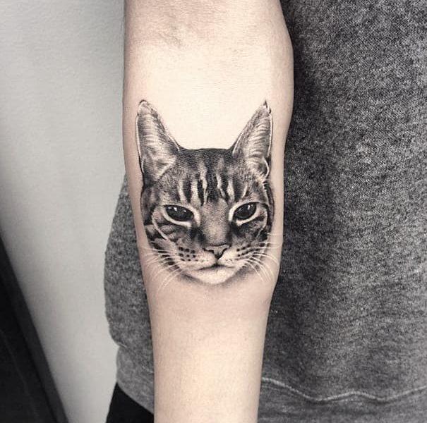 cara gato barcelona tattoo