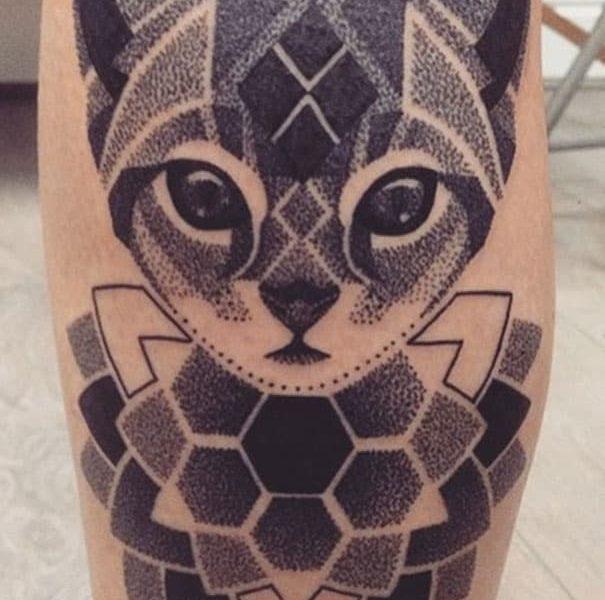 gato geometrico