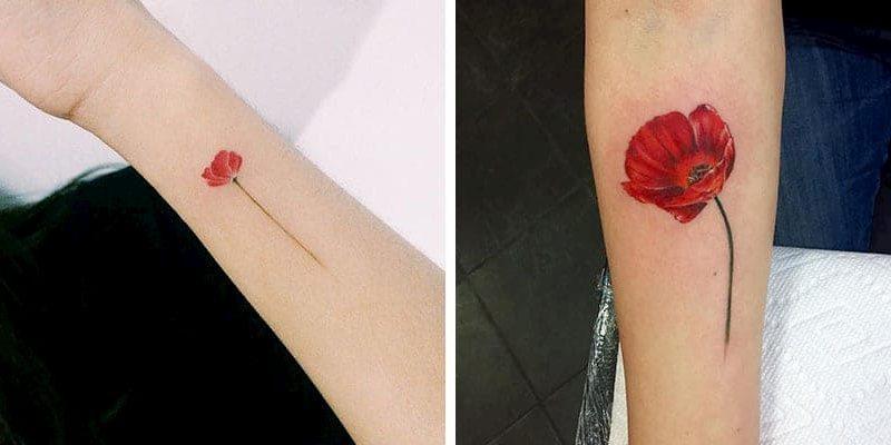 tatuaje amapola (8)
