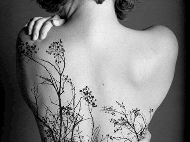 tatuaje enredadera (18)